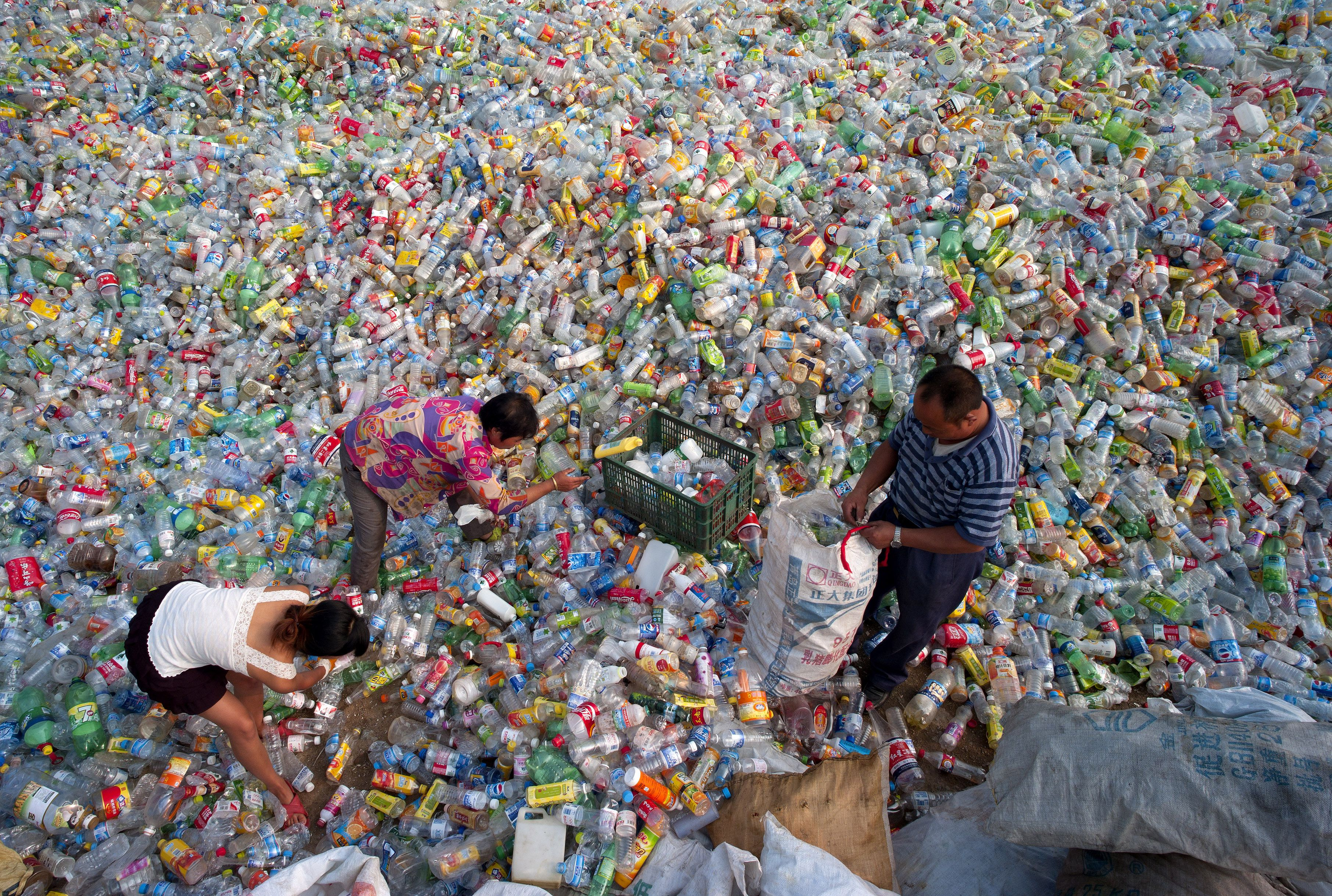 Depósito de recuperación de botellas de plástico