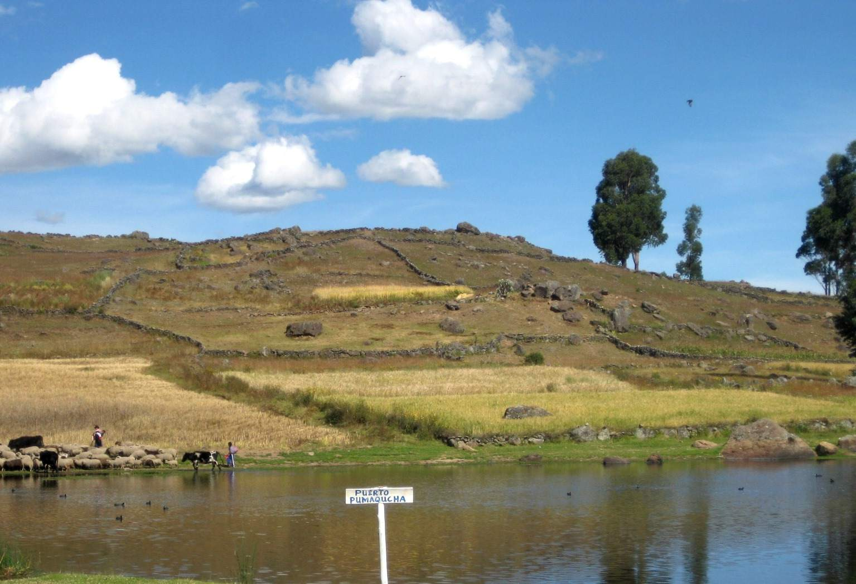 Laguna de parinacocha