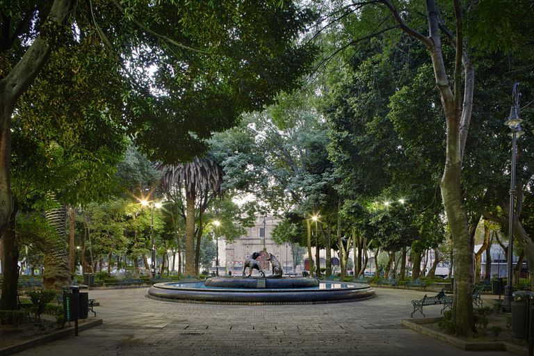 Plaza de coyoacan