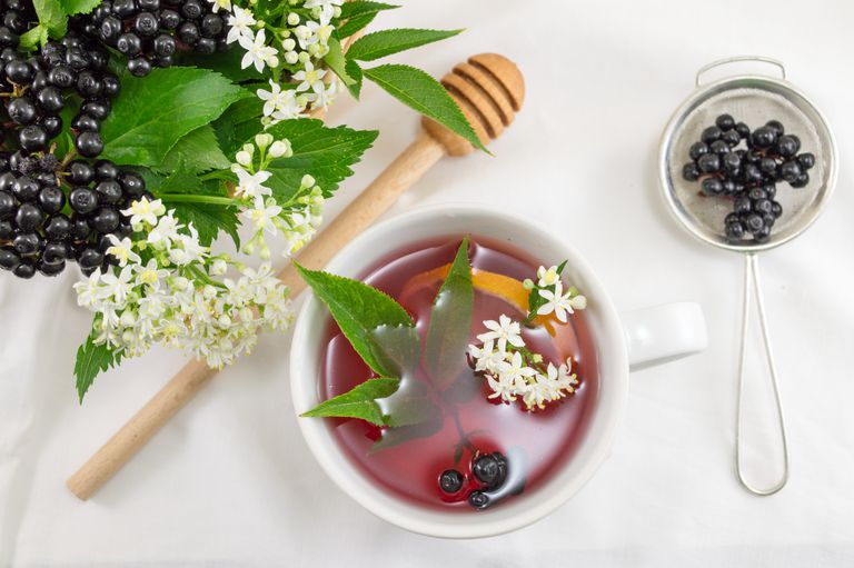 Cup of fresh elderberry tea with berries and honey