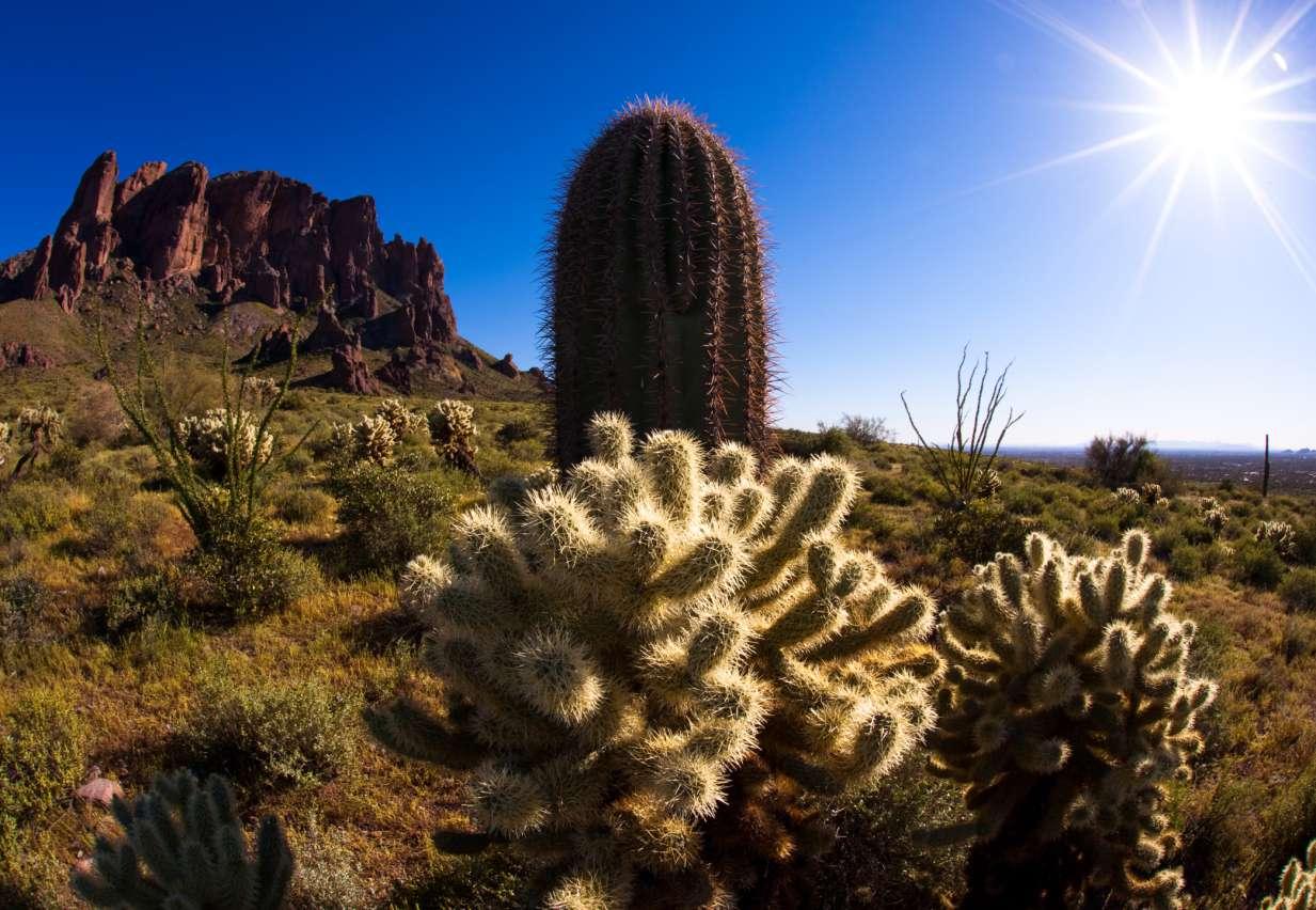 Pinacate y Gran Desierto de Altar