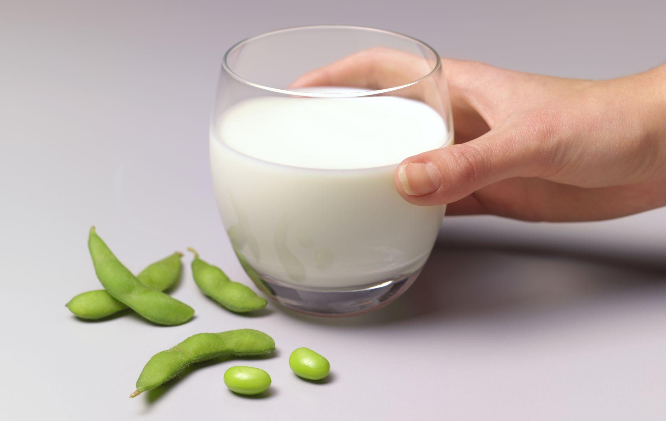 Dieta depurativa de la soja