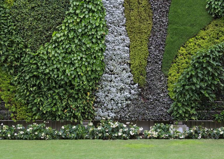 Jardines verticales para tu casa o negocio - Jardin vertical en casa ...