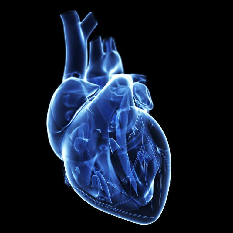 Tipos de enfermedades del corazón