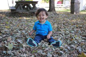 Actividades al aire libre en otoño