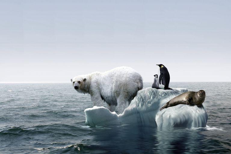 Calentamiento global, imagen conceptual