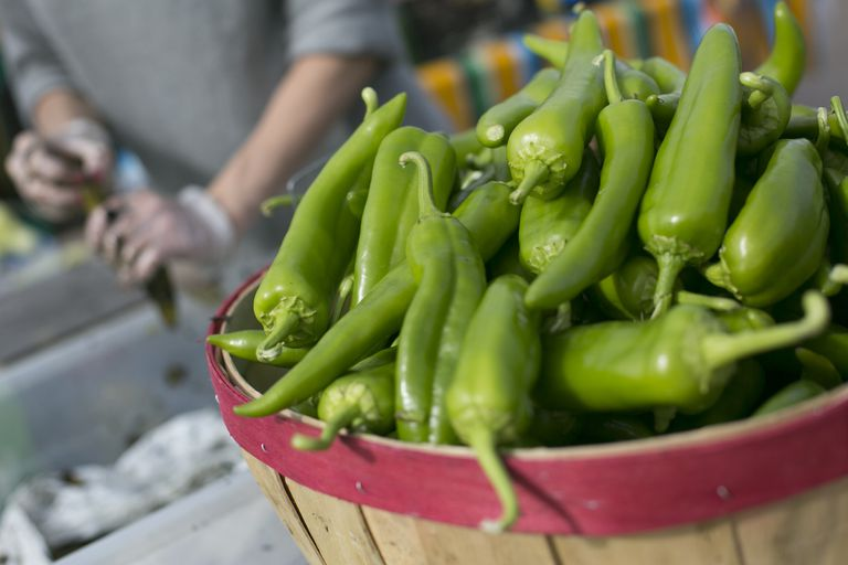 Fresh green Anaheim chile peppers