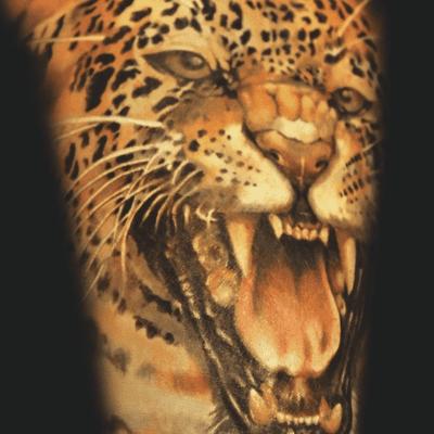 Significado De Los Tatuajes De Tigres Y Dragones