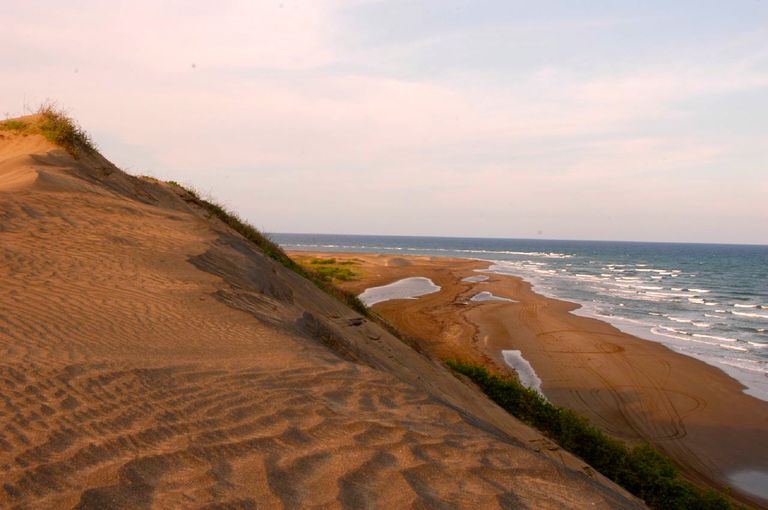 Vista de las dunas de Chachalacas