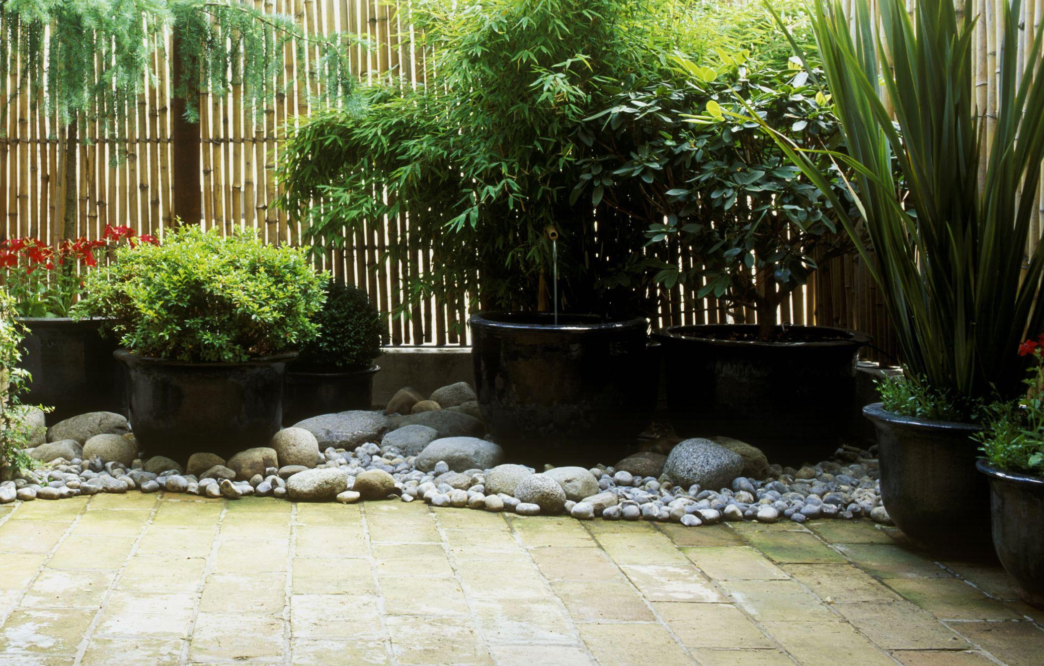 Crea un jard n para la sombra for Para desarrollar un jardin contemporaneo