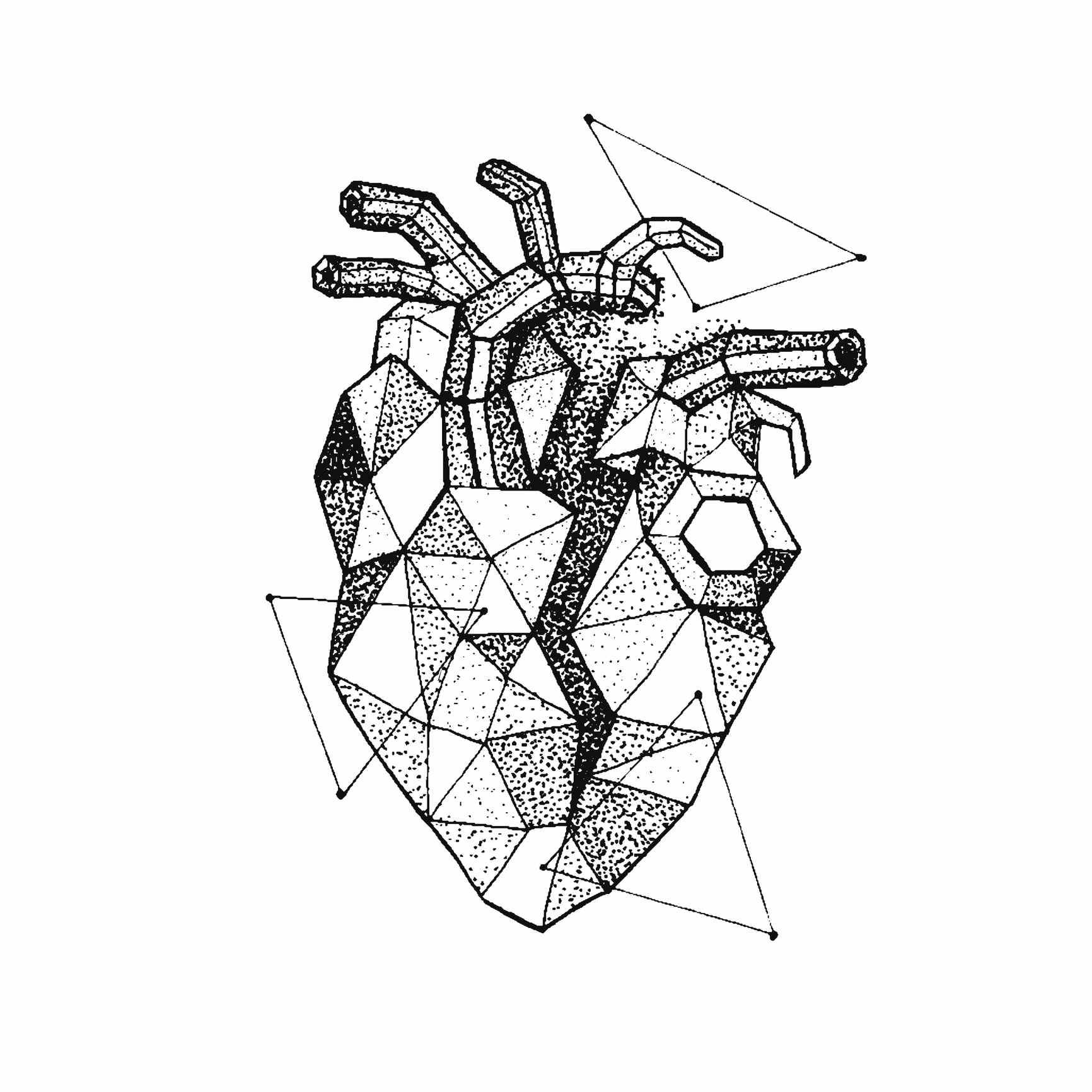 Ilustración de un corazon