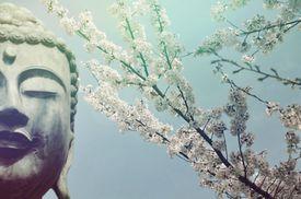 Buddha Shakiamuni