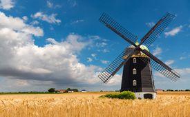 Un molino de viento en un campo de trigo
