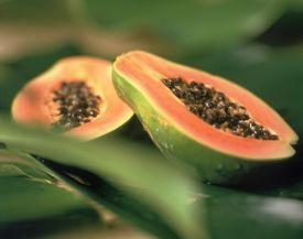 La infusión de hojas de papaya para la salud