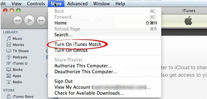 Activar iTunes Match
