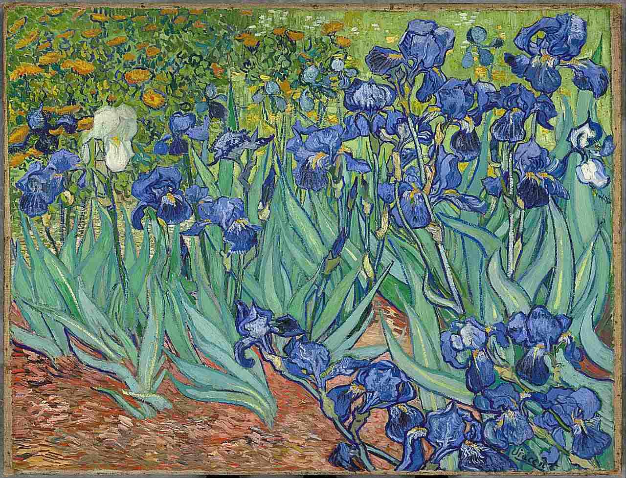 Vincent van Gogh, iris flores