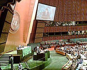 Naciones Unidas es el foro de negociación más importante del mundo