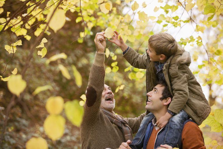 Familia admirando los cambios de la naturaleza en otoño