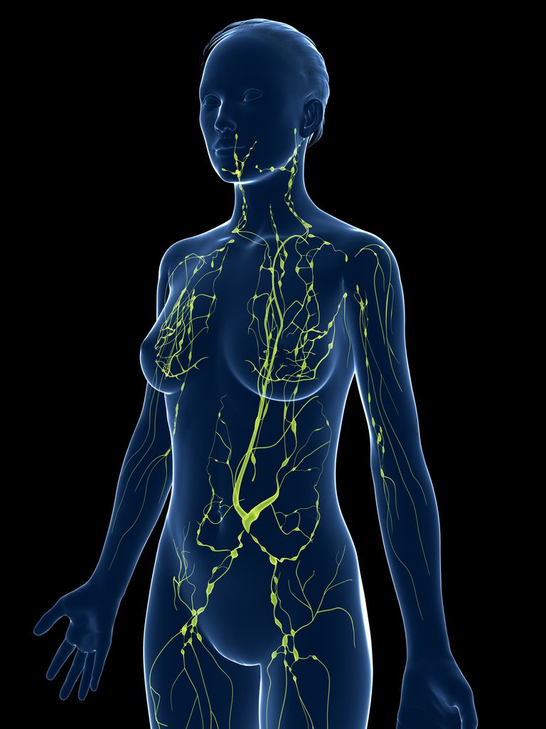 El drenaje linfático limpia los nodos de toxinas