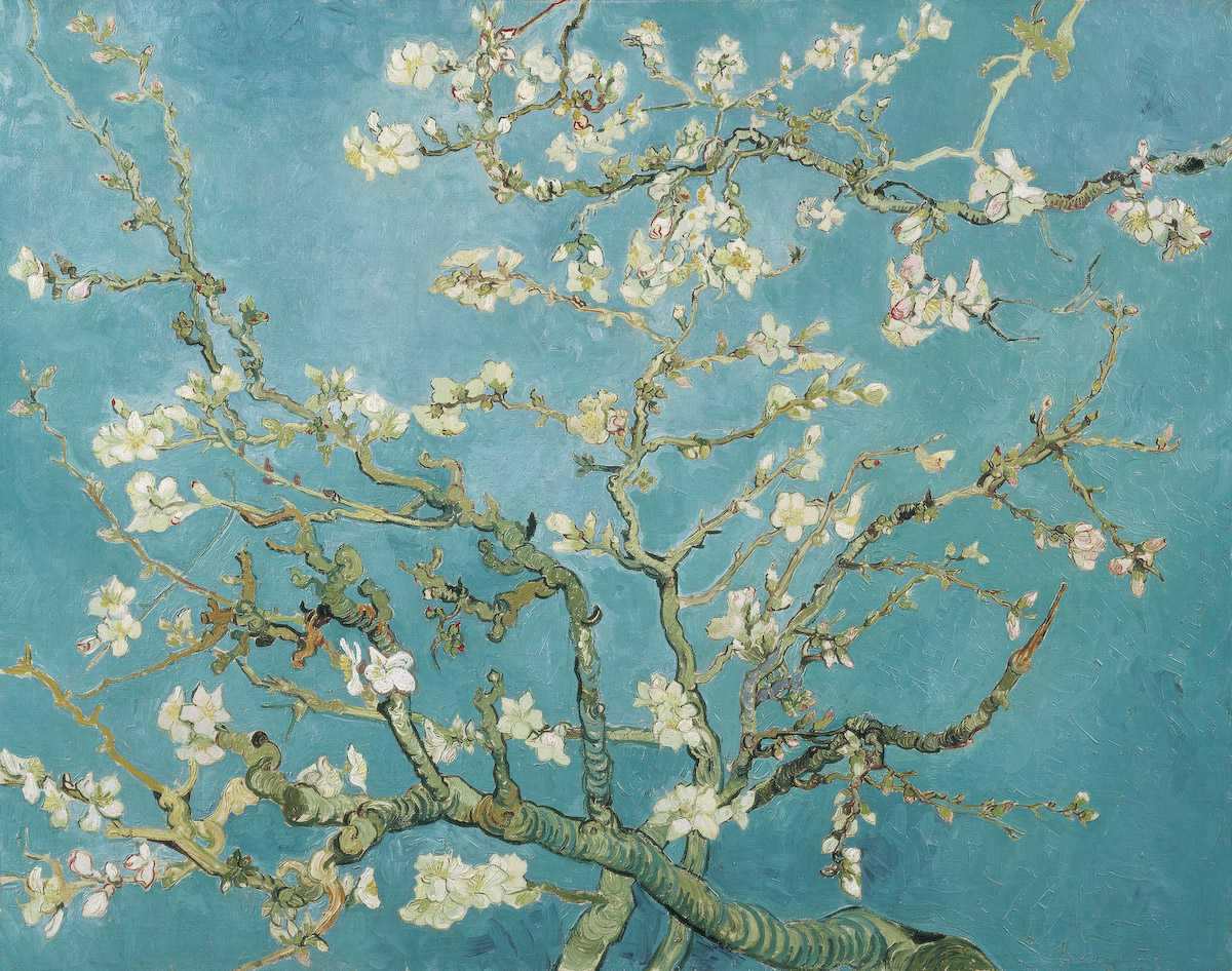 Vincent van Gogh, Almendro en flor
