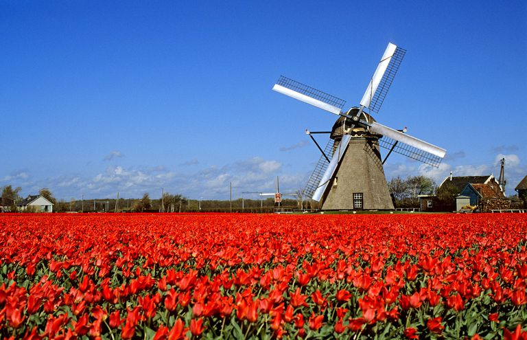 Paisaje en Holanda