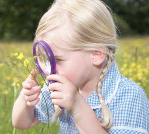 Resultado de imagen de La curiosidad trae conocimiento