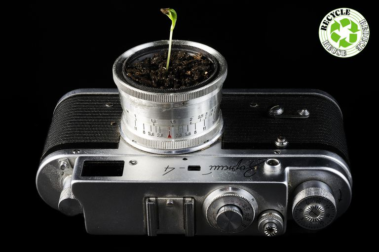 RRR Sprouting Camera