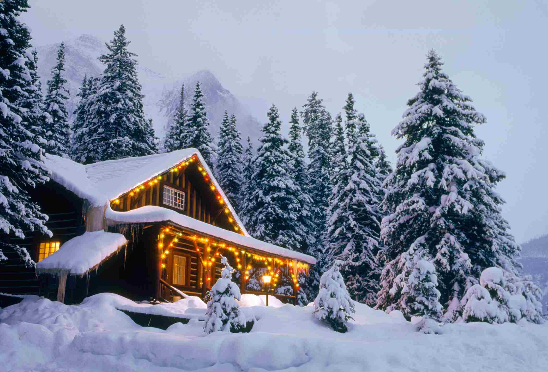 Cabin in the Woods, Winter, Christmas Lights