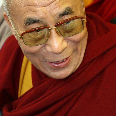 25 Frases De Amor Del Dalai Lama