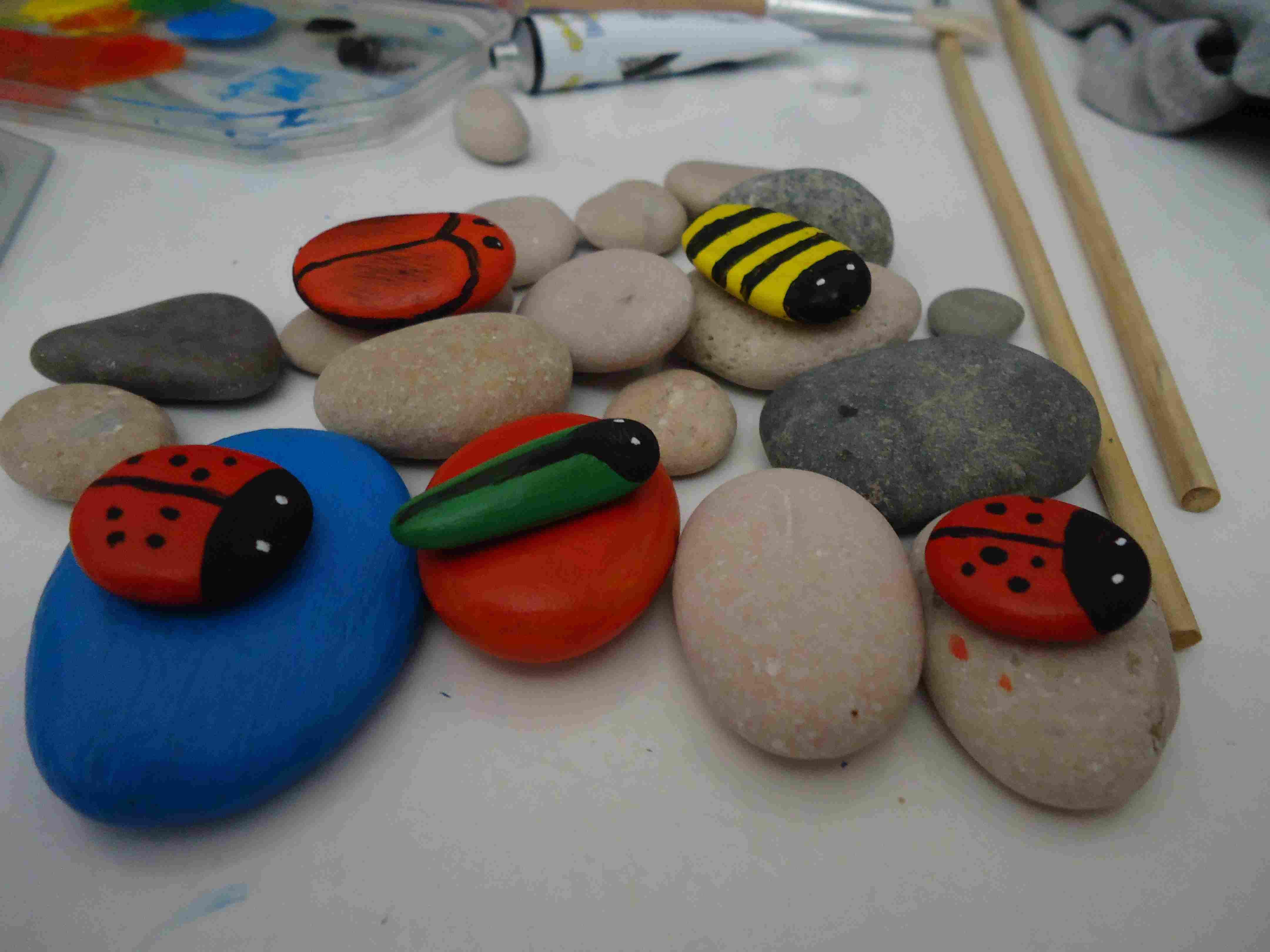 Insectos con piedras de río