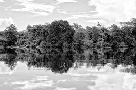 Reflejos en las aguas del río Amazonas