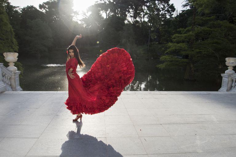 Flamenco alegría
