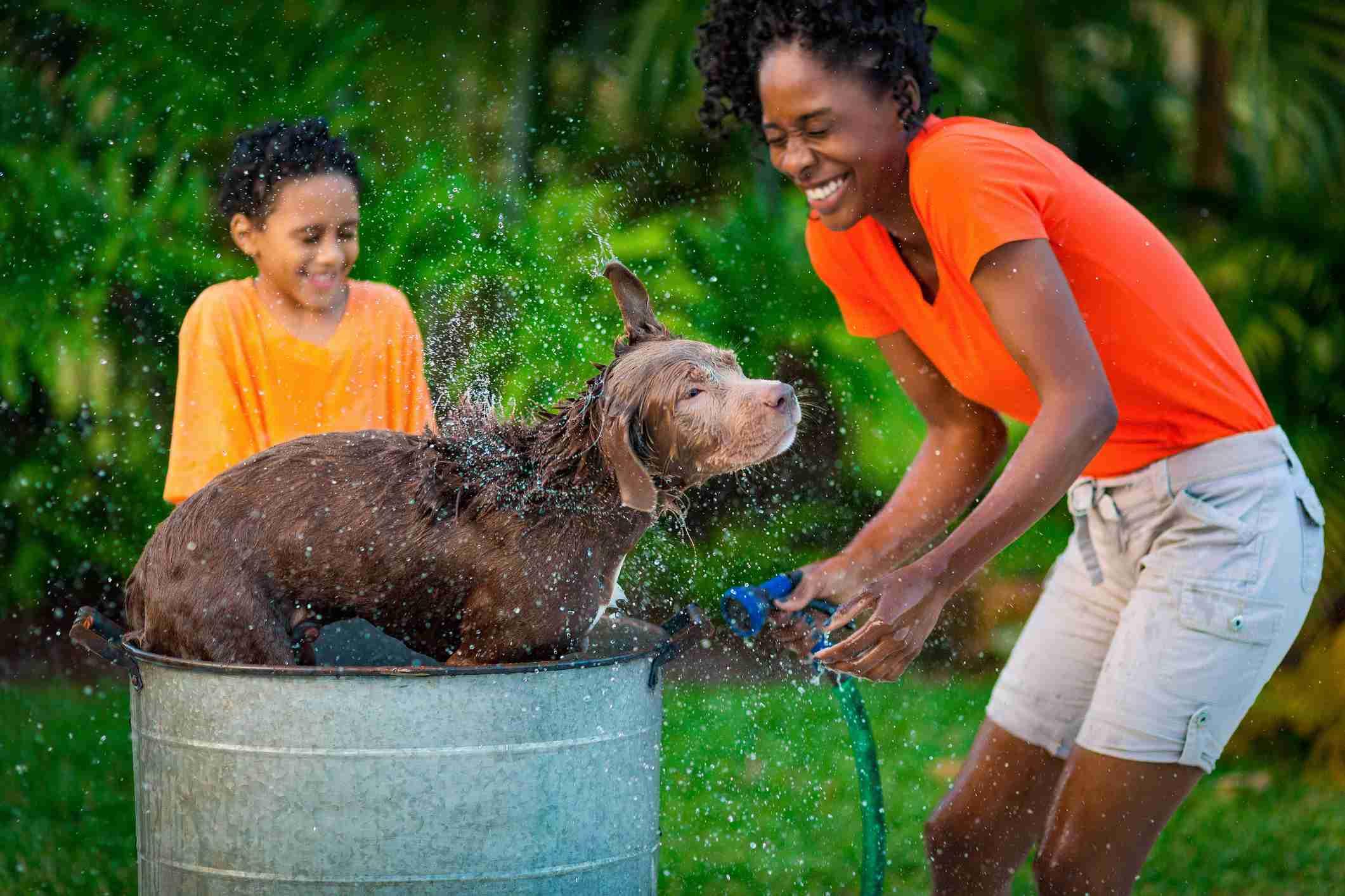 Madre e hijo dan un baño a su perro
