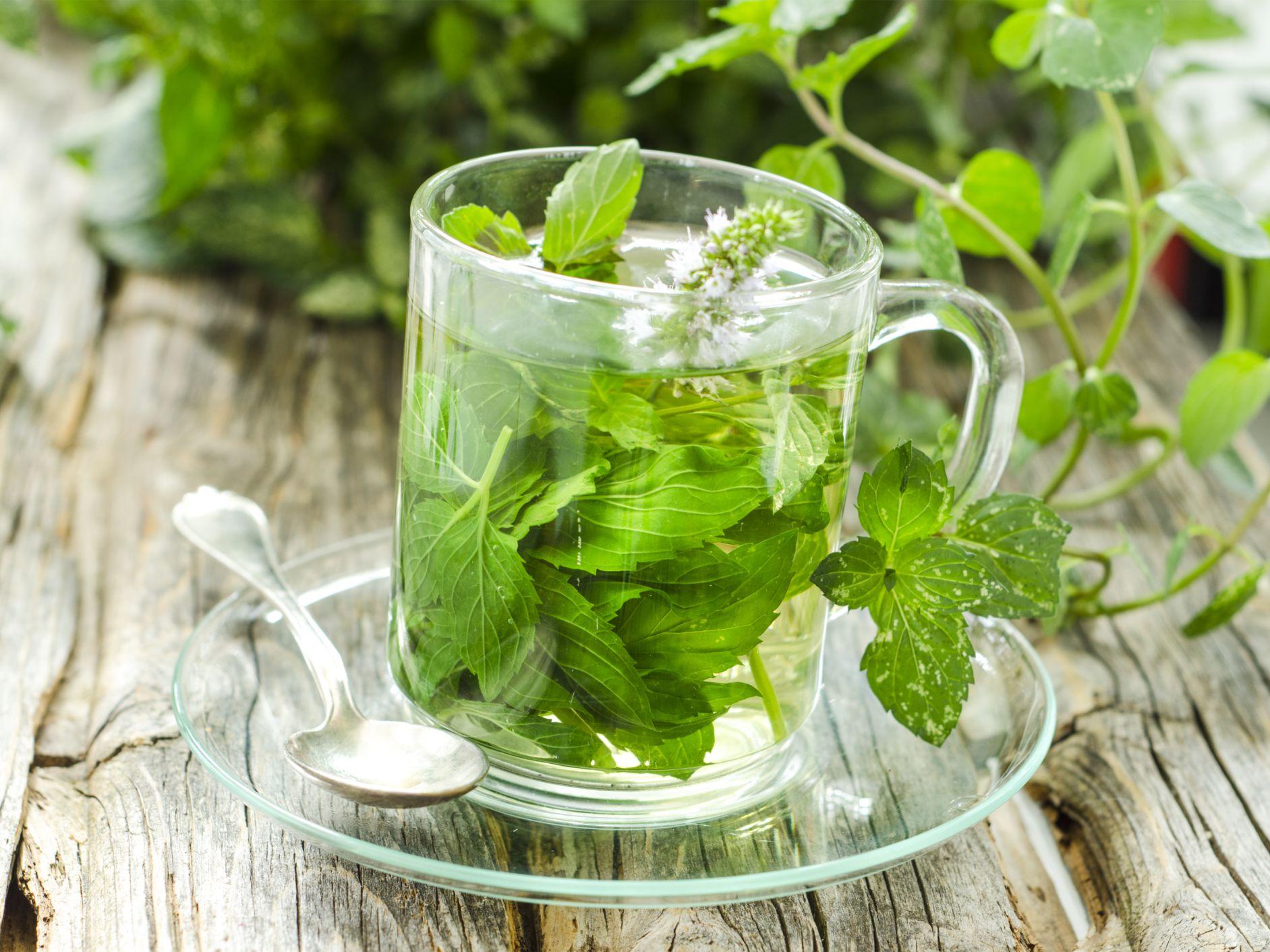 hierbas para adelgazar en la menopausia puedo perder