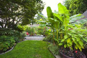 Garden in Portland Oregon