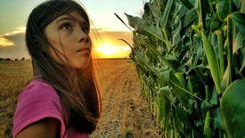 Una puesta de sol de Texas